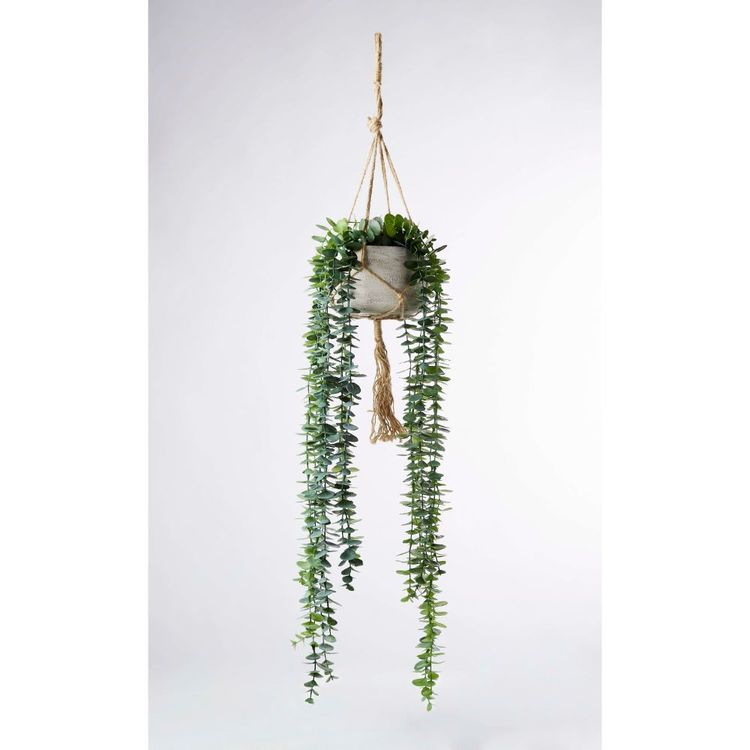 Living Space String Of Pearls In Hanging Pot Green 105 cm