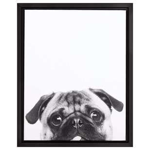 Bouclair Dogs & Cats Pug Framed Print