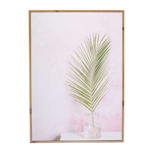 Cooper & Co Fern On Pink Wooden Frame Print