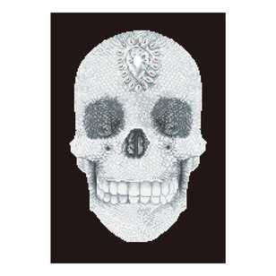 Diamond Dotz Crystal Skull Kit