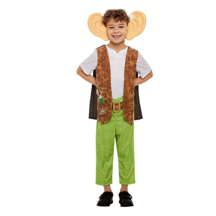 Roald Dahl BFG Kids Costume Green