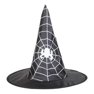Spooky Hollow Witch Hat with Spider Web Print
