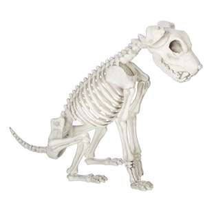 Spooky Hollow Skeleton Dog Sitting
