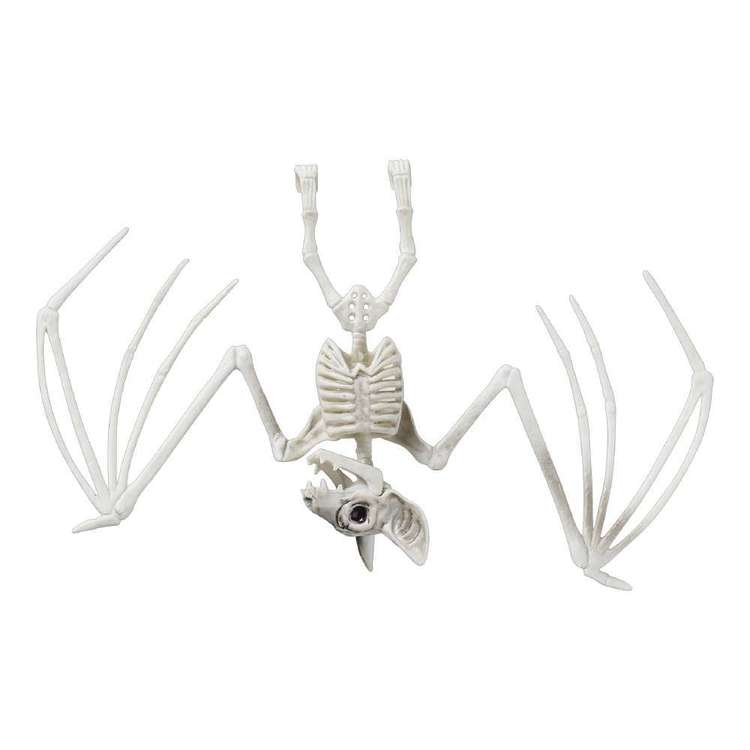 Spooky Hollow Bat Skeleton