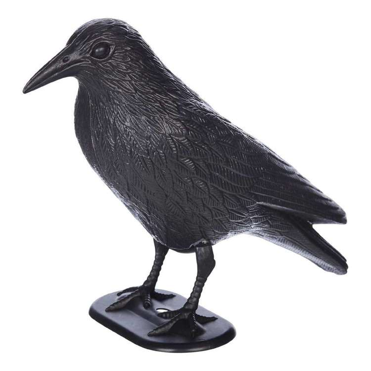 Spooky Hollow Black Crow with Stake