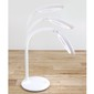 Triumph LED Rechargeable Magnifying Desk Lamp White