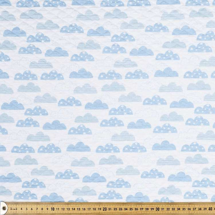 Clouds Printed Quilted Fleece Fabric