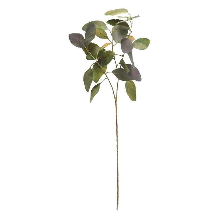 Eucalyptus 3 Stem Spray