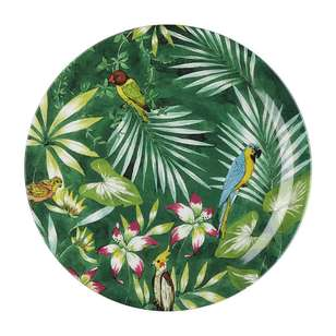 Culinary Co Jungle Cupe Dinner Plate
