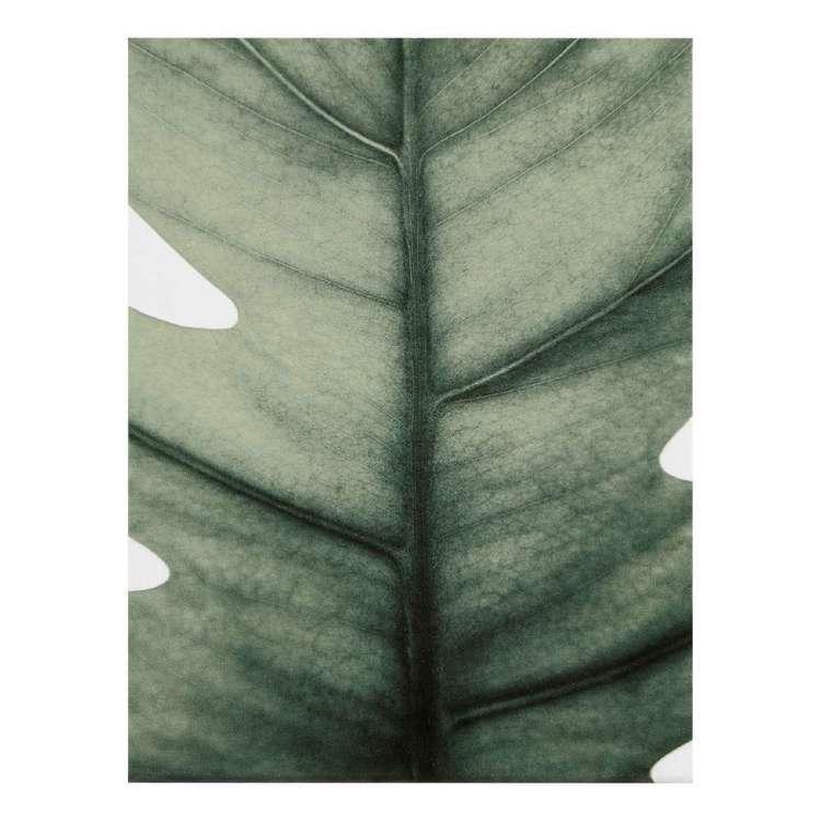 Bouclair Botanica Leaf Canvas Print