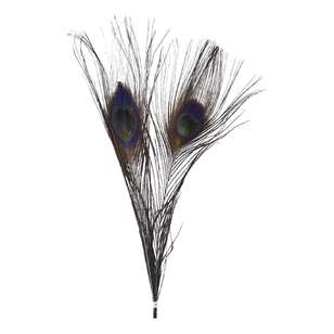 Maria George Coloured Peacock Feather 2 Pack