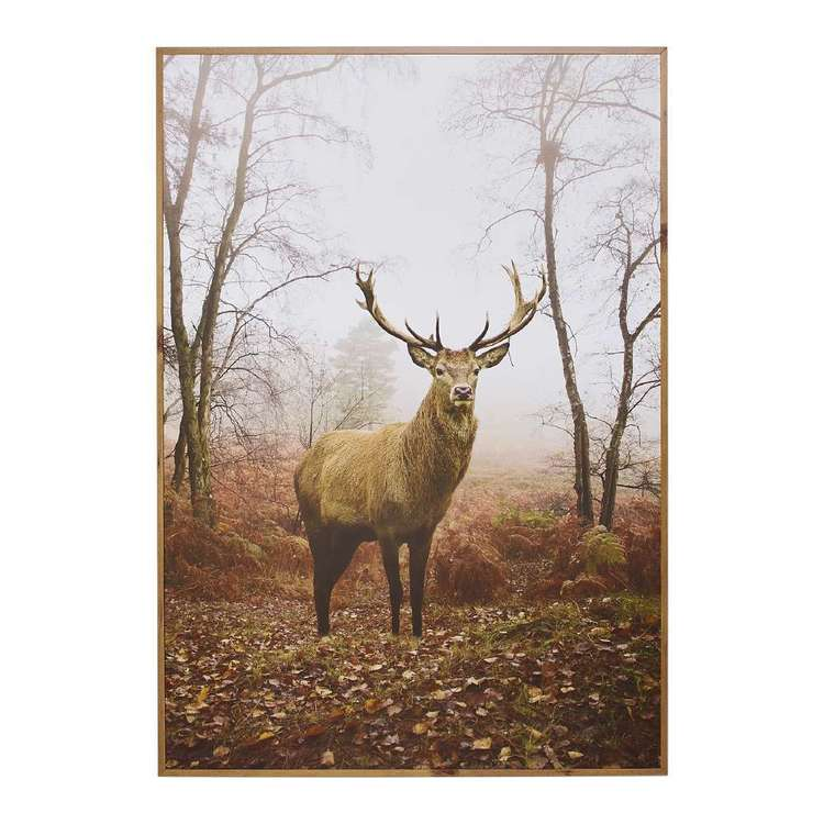 Cooper & Co Framed Deer Art