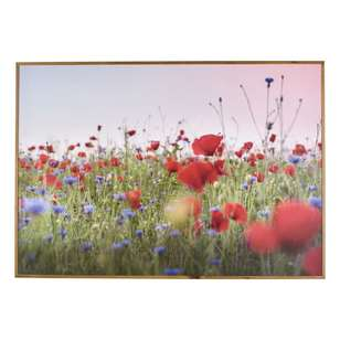 Cooper & Co Art Field of Poppies Framed Print