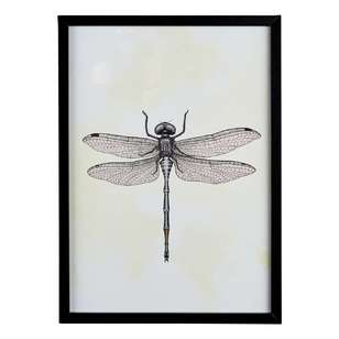 Cooper & Co Dragonfly A3 Framed Print #4