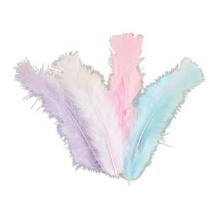 Craftsmart Turkey Feather 10g Pack