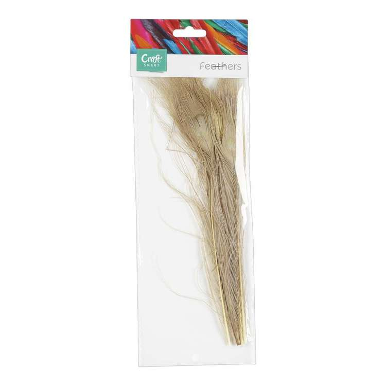 Craftsmart Peacock Feather 5 Pack