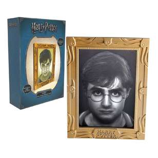 Harry Potter Holopane - Harry Potter
