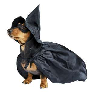 Witch Animal Costume