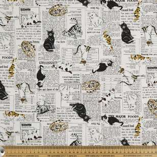Cats News Printed Japanese Buzoku Cotton Duck Fabric