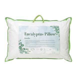 Living Space Eucalyptus Scented Pillow