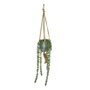 Living Space String of Pearls In Hanging Cement Pot