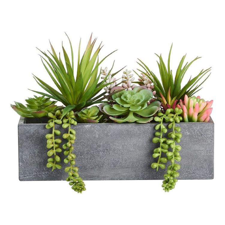 Living Space Mixed Rectangle Planter