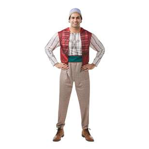 Disney Aladdin Adult Costume