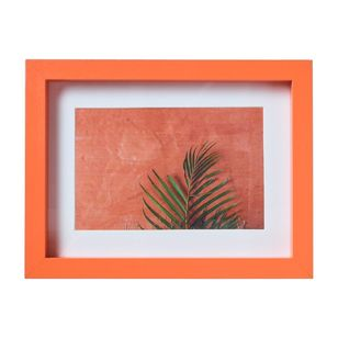 Living Space European Holiday Fern Framed Print
