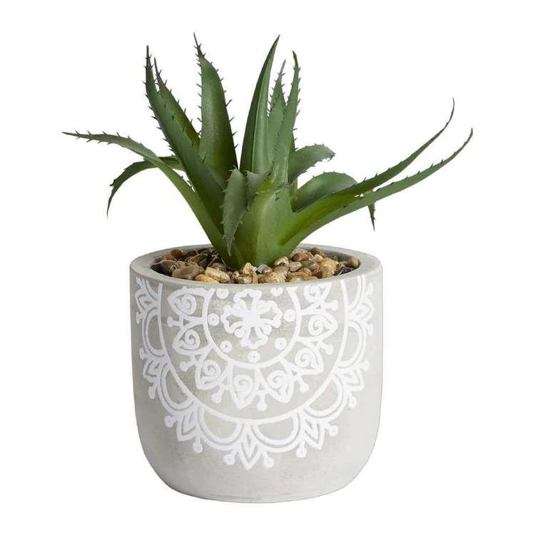 Ombre Home Mediterranean Summer Succulent Cement Pot