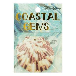 Coastal Scallop Shells 2 Pack