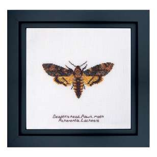 Thea Gouverneur Death Hawk Moth Cross Stitch Kit