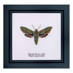 Thea Gouverneur Spurge Hawk Moth Cross Stitch Kit