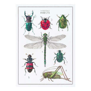 Thea Gouverneur History Of Insects Cross Stitch Kit