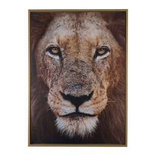 Cooper & Co Lion Canvas Print