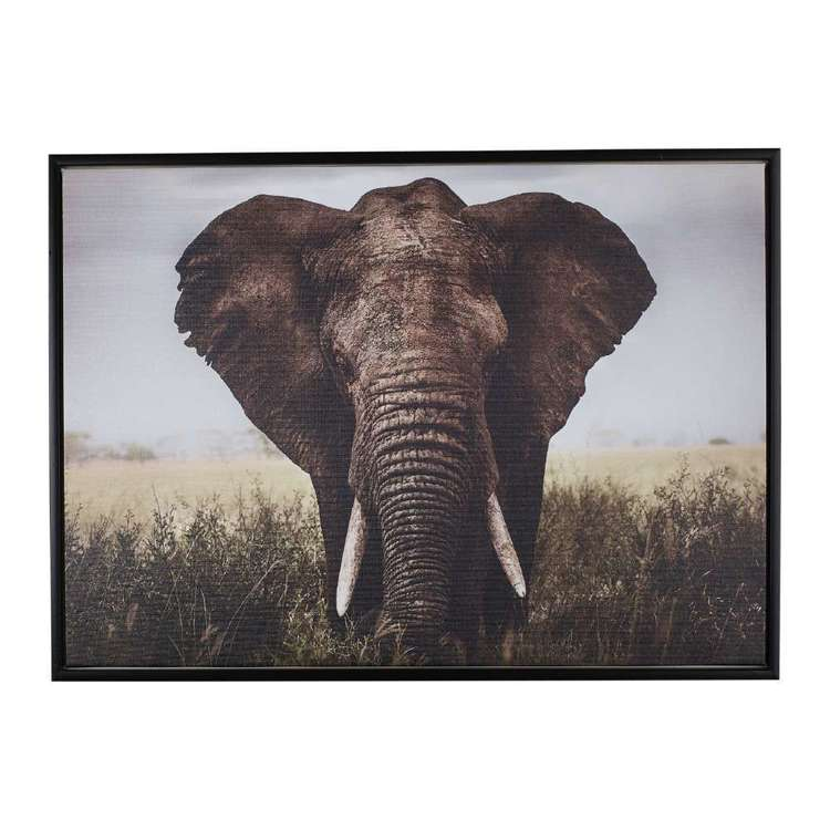 Cooper & Co Elephant Canvas Print