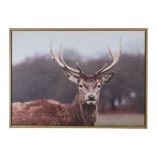 Cooper & Co Deer Canvas Print