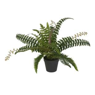 Botanica 50 cm Artificial Fern