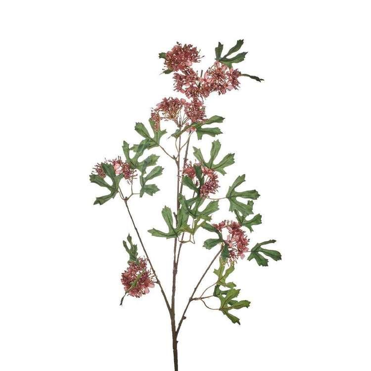 Autumn Lace Flower Stem