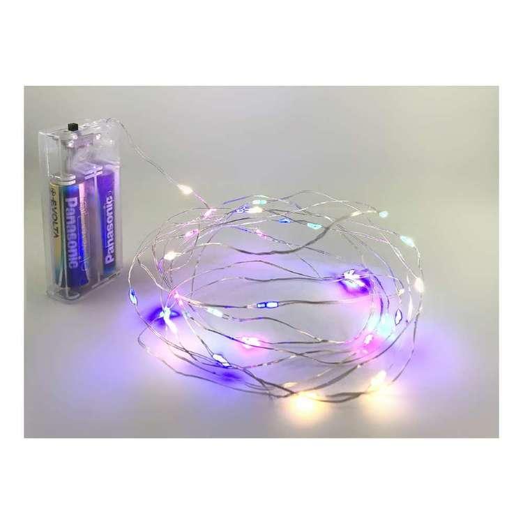 Alpen LED Light String