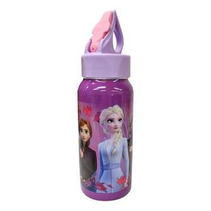 Frozen 2 Stainless Steel Bottle