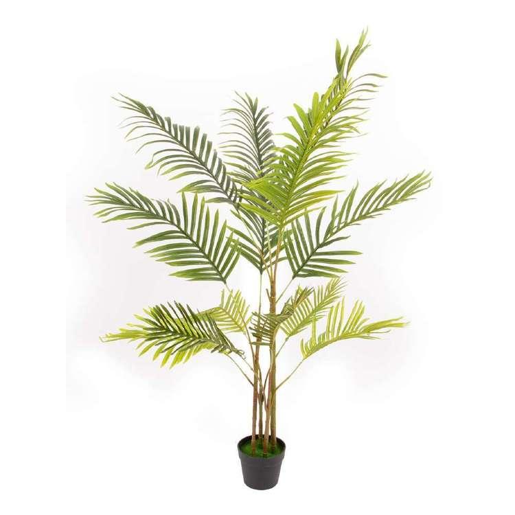 Botanica Artificial Phoenix Palm Plant