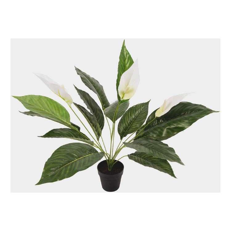 Botanica Artificial Peace Lily Plant