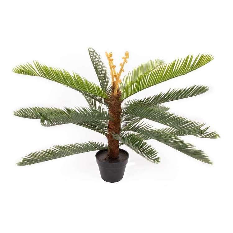 Botanica Artificial Cycas Plant