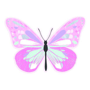 Artwrap Butterfly Invites 8 Pack