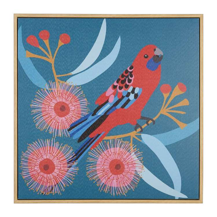 Koo Jocelyn Proust Crimson Rosella Framed Art Multicoloured 50 x 50 cm