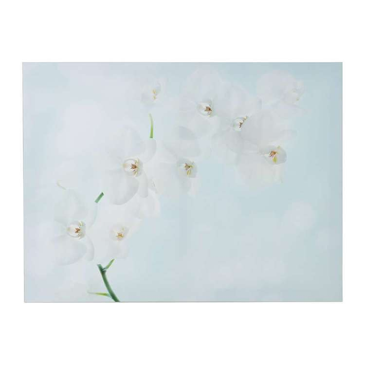 Impact Posters White Orchid Framed Canvas