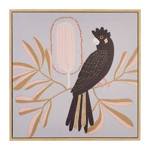 Koo Jocelyn Proust Black Cockatoo Framed Art