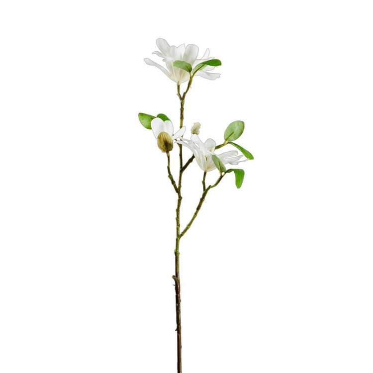 62 cm Spring Magnolia Stem #1