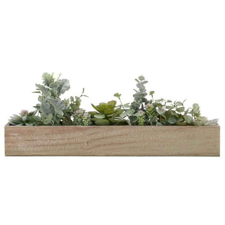 Bouclair Essence Of Green Succulent In Wood Tray