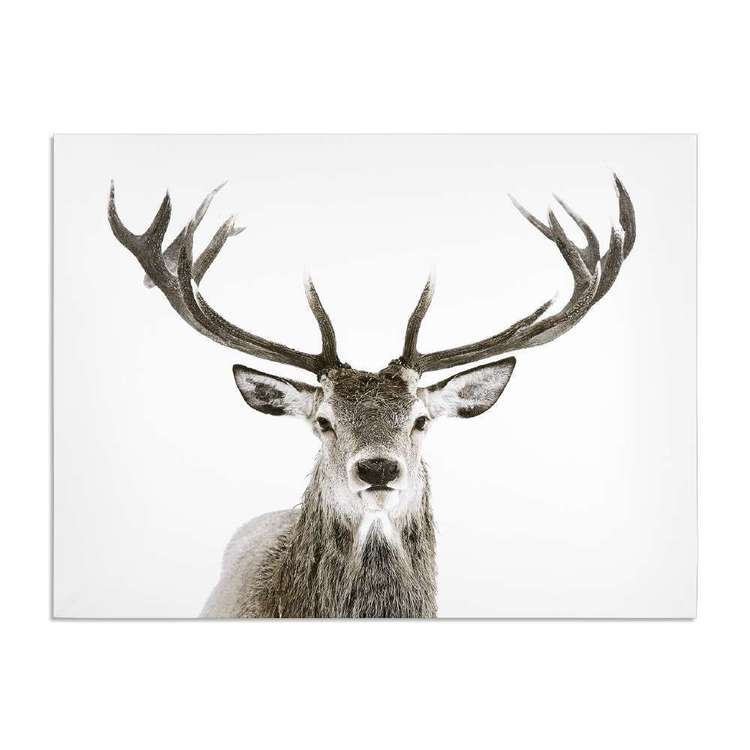 Bouclair Faux Fur Deer Canvas